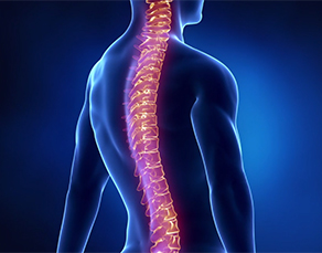Spinal Pain Video - Virtua