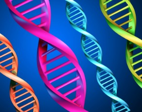 Virtua Questionnaire: Could You Have a Genetic Cancer Risk?