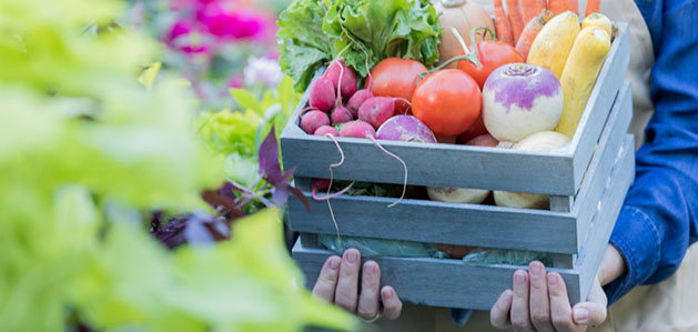 Is Eating Locally Grown Food Healthier for You?