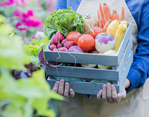 Is Eating Locally Grown Food Healthier for You? - Virtua Article Amisson